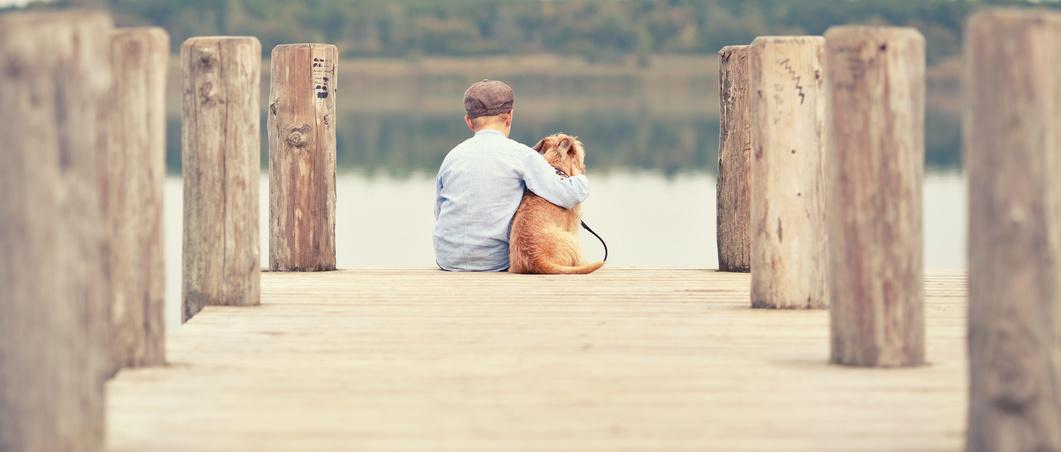 Mein Urlaub mit Hund - hier ist Ihr Hund willkommen !!!
