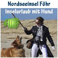 Foehr_Hund