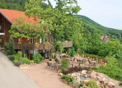 Apartmenthotel im wunderschönen Luftkurort Dannenfels - Hund erlaubt