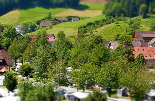 Camping - Natur hautnah in Bad Rippoldsau-Schapbach - Hund erlaubt