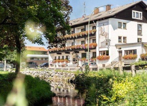 Hotel-Restaurant Zum Dragoner in Peiting - Hund willkommen