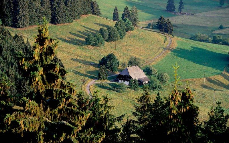 Urlaubsregion Nationalpark Schwarzwald